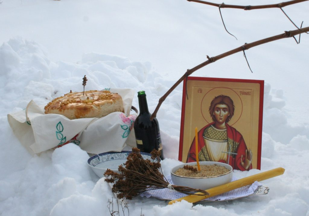 Slavski kolač u vinogradu na dan Svetog Trifuna